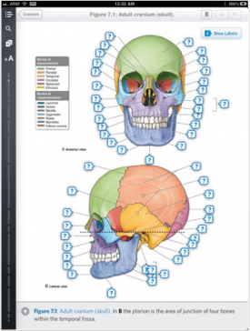 Post image for Interactive iPad Medical Textbooks gain traction, Publisher deal signifies new era of mobile medical texts