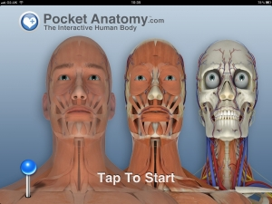 Post image for Pocket Body iPad Anatomy app helps improve anatomical understanding