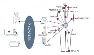 Post image for Wireless Body Area Networks: Driving mHealth By Delivering Value to Patients, Providers and Payers