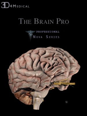 Post image for NOVA Series Proves Its Worth With Brain Pro iPad Anatomy App