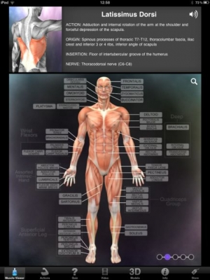 Post image for Muscle &#038; Bone Anatomy 3D is a great anatomy app for medical students