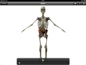 Post image for 3D Consultation app delivers efficient orthopedic patient education from your iPad