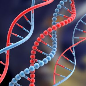 Post image for App store for DNA sequencing software opens for business