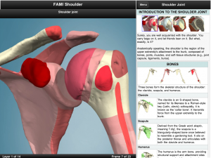 Post image for Renowned 3D anatomy developer Primal Pictures releases first iPad app