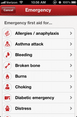Post image for Learning First Aid from the Red Cross through a Health Gamification app