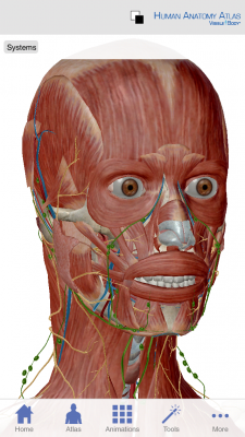 Post image for Visible Body Human Anatomy Atlas app updated to include microanatomy and greater detail