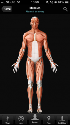 Post image for Virtual Body Human Anatomy is an impressive 2D anatomy app