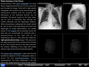 Post image for Diagnostic Radiology Chest Primer app is a mini textbook built for the iPad